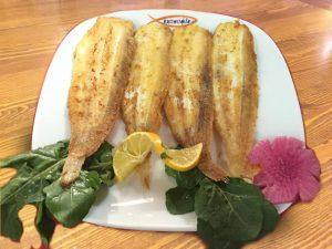Dil-Balığı-300x225Dil Balığı