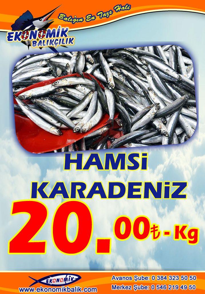 HAMSİ-KARADENİZ-717x1024Ana Sayfa